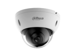 Dahua IPC-HDBW4239R-ASE 2MP WDR Full-color Starlight Dome Network Camera